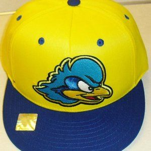 Other - Delaware Blue Hens snapback hat Ncaa college